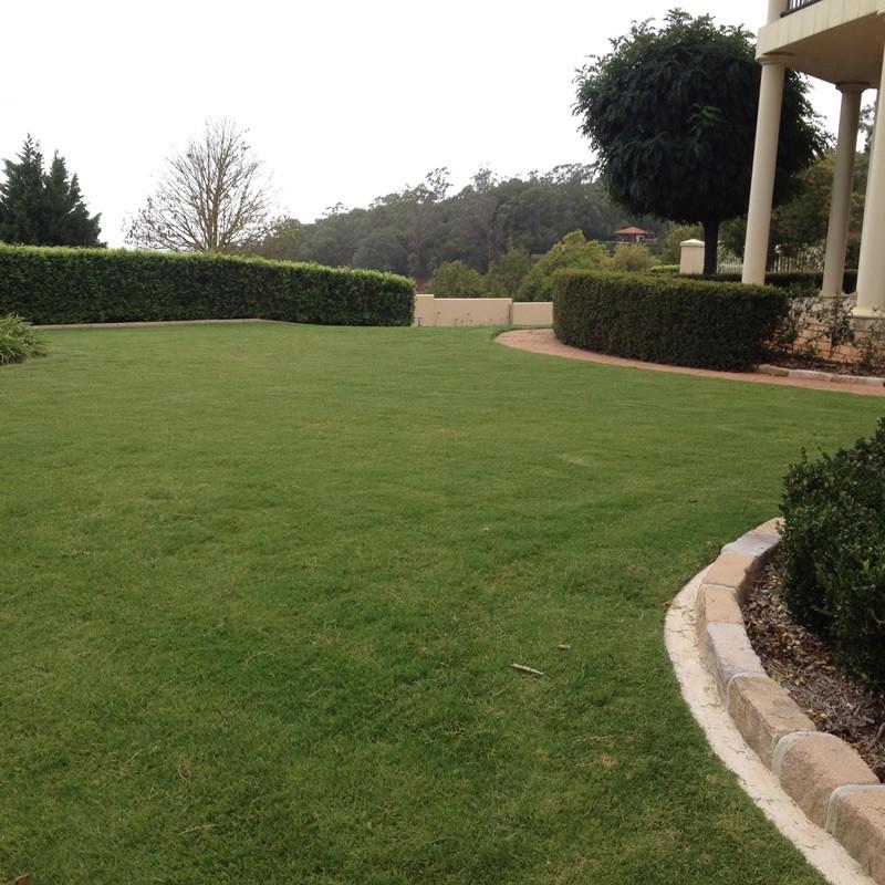 Trademark Landscapes - Maintenance